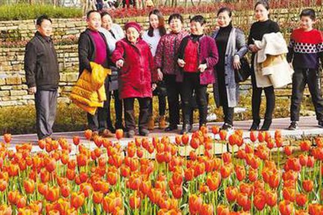 春节假日第五天 都市旅游和古镇旅游人气旺