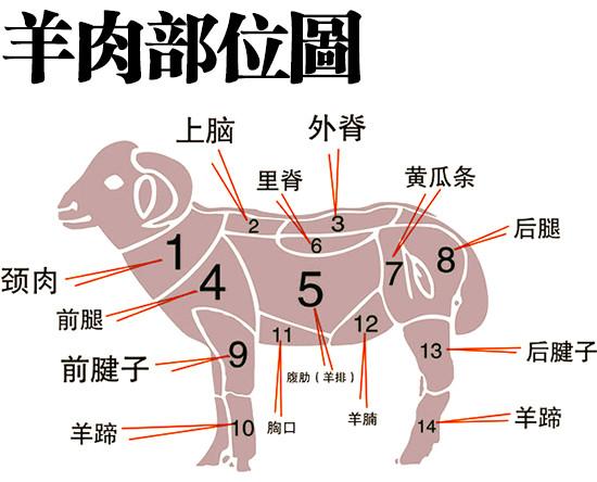 羊肉各部位该怎么吃?xo.jpg