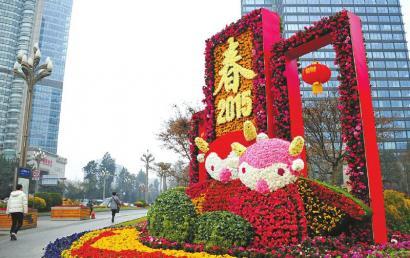2月16日,成都滨江路,鲜花迎新年。摄影杨涛