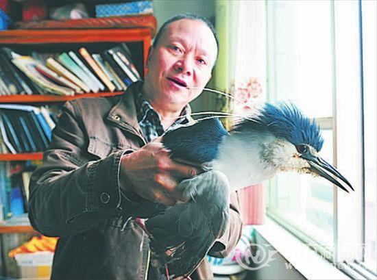 """陈世荣和他收留的""""怪鸟"""""""