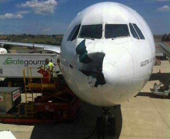 图5.伊比利亚空中客车A340-300飞行中被秃鹰撞出一个大洞,最后安全降落