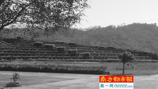 陆丰坟爷背后公益性公墓难产 政府重视但用地手续难办 陆丰 第3张