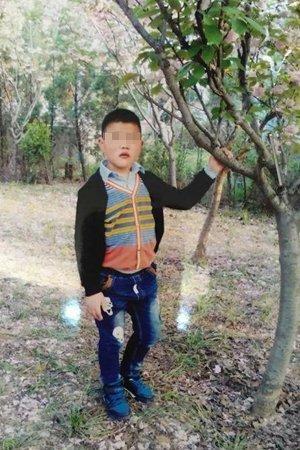 男孩丢失前一个月的照片。图片来自网络