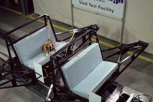关注宠物安全  斯巴鲁展开狗狗碰撞测试