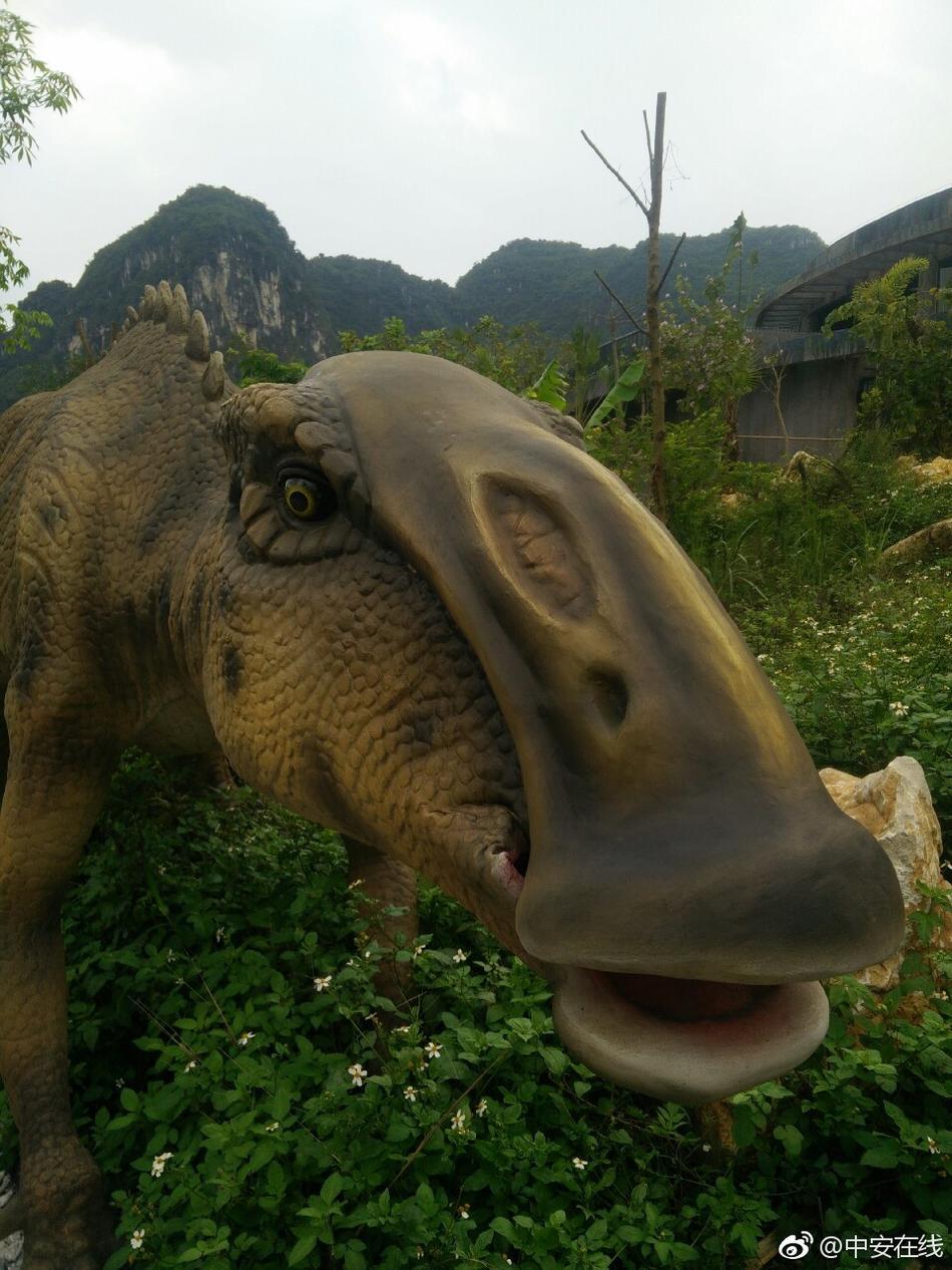 """西扶绥县被授予中国""""恐龙之乡""""称号.扶绥县位于广西西南部,曾"""
