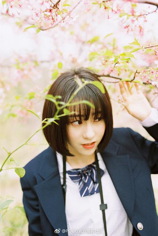 春天要和可爱的姑娘去看樱花.