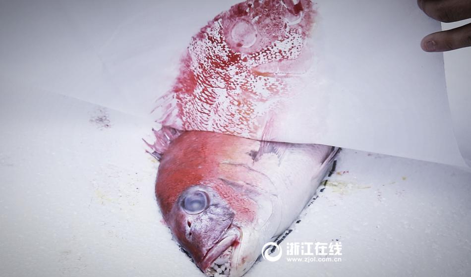 从一条鱼变成一幅画 这样的技艺你见过吗