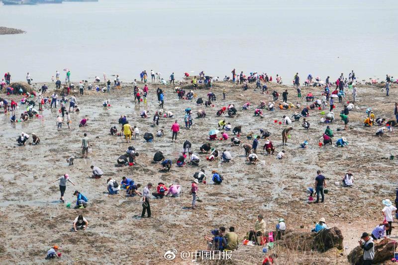 夏季游青岛 小渔村别有滋味