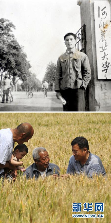 1970年日本农业人口_日本农业人口跌破200万 老年人弃农现象加剧