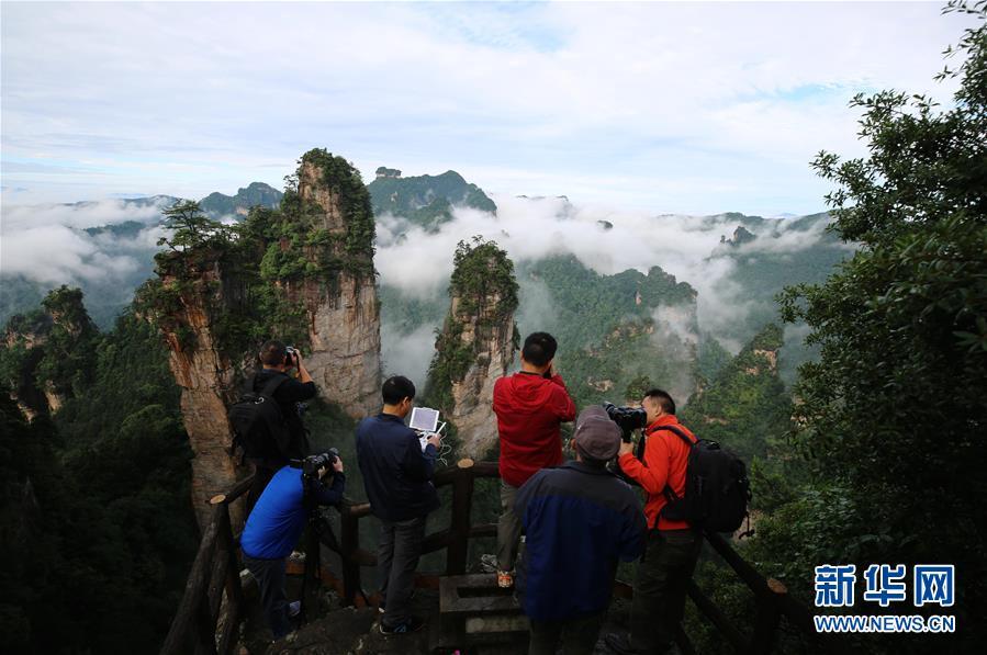 6月16日,摄影爱好者在张家界黄石寨景区拍摄雨后云海.当日早晨,图片