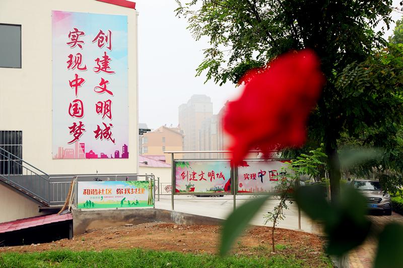 北京pk计划超准软件