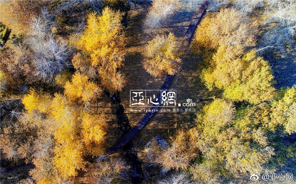 金沙捕鱼游戏官方下载,金沙网站手机版4066 - 官方平台