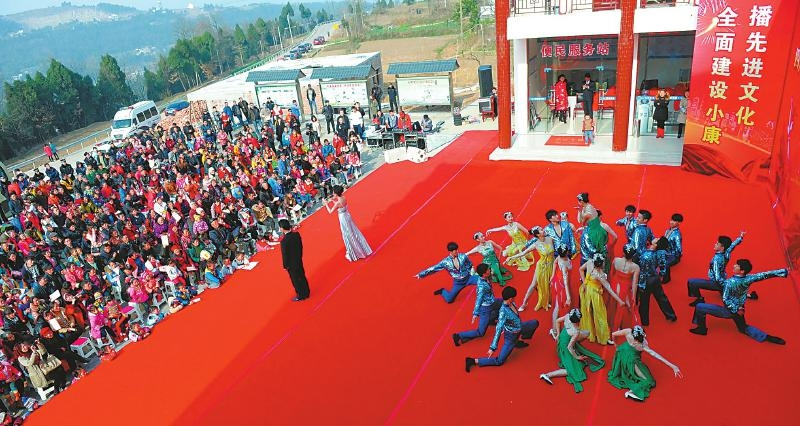 海南省长回应三亚海胆事件