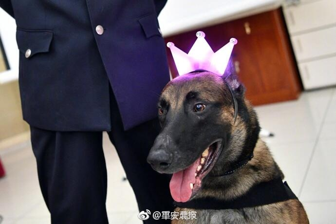 2015年云南省成考招生答考生问