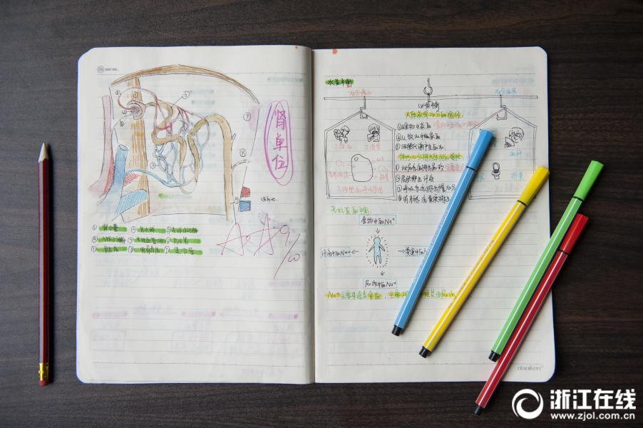 科学笔记配插画 手绘作业获点赞