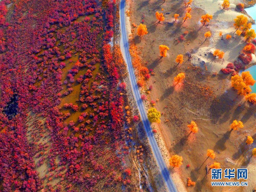 关于中国历史悠久的诗句