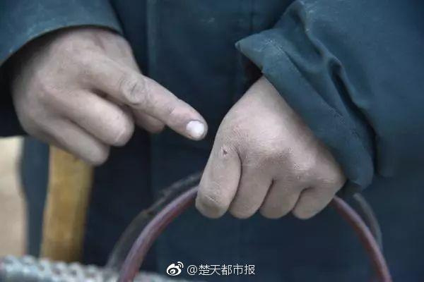草久视频在线中文字幕