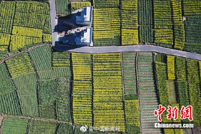 宋应星编写的《天工开物》在中国农业发展方面产生了巨大的影响,并且被翻译传到了西方。