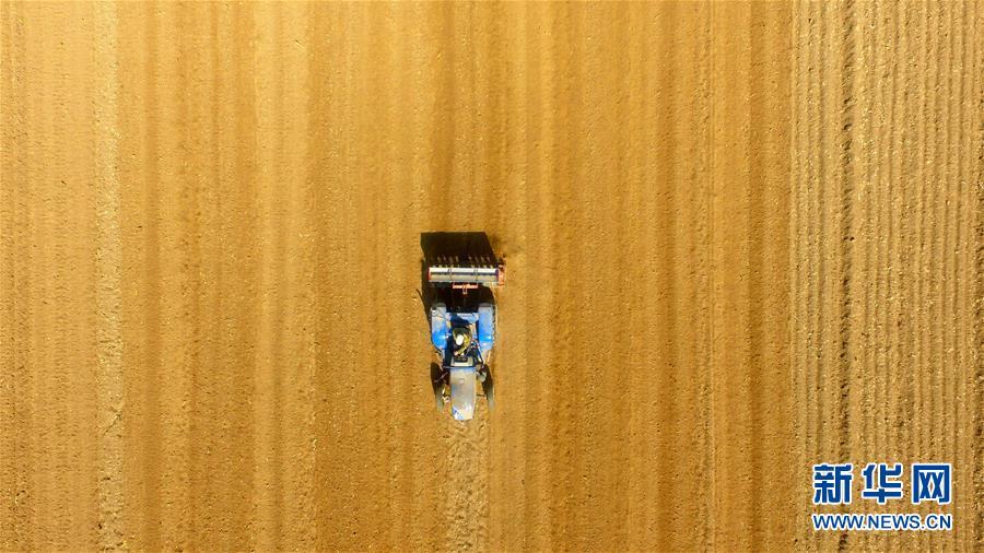 B32524Q6335K000_TDK Corporation_Film Capacitors
