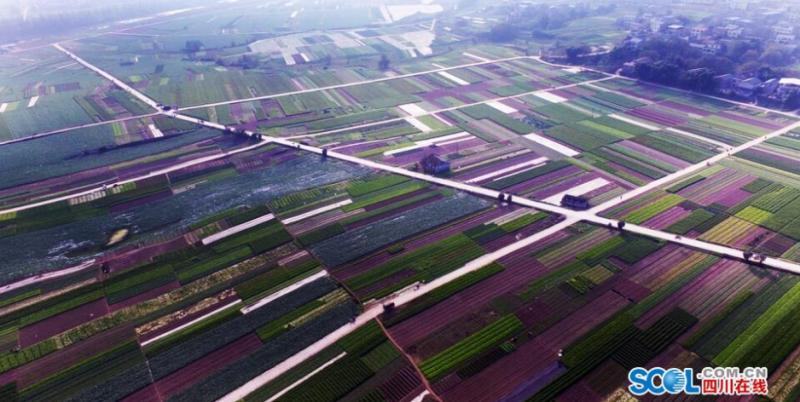 渑池绿农科技有限公司招聘信息