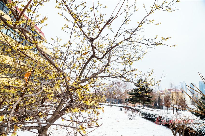 太陽城集團娱乐官网