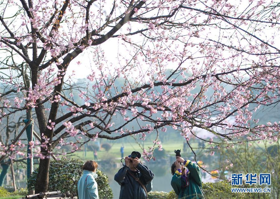 昨日黑龙江省内无新增确诊病例,无新增境外输入确诊病例