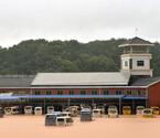 德安县遇罕见暴雨被水淹