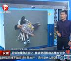 女司机扶起被撞孕妇抚慰