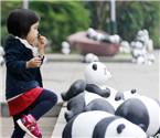 国庆节南山熊猫出没