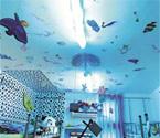 女生将寝室变海洋世界