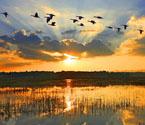 生态文明 贵州最美山水