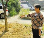 鄞州小区绿化被破坏