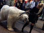 金发美女东京街头遛北极熊