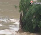 广西暴雨来袭致山洪爆发