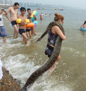 一周图片:女子带巨蟒宠物下海