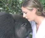 女子找到大猩猩玩伴