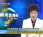 河北省部长梁滨被调查