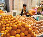 宁波橙子上市旺季来临