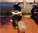 摩托车排气管被套避孕套