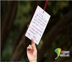 女硕士公园树上挂征婚卡