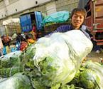 甬城蔬菜价稳量足