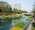 明年杭州将整治45条河道