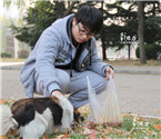 青岛大学生喂养流浪猫