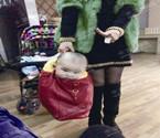 温州妈妈分享袋装宝宝图