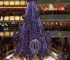 沈城圣诞树集体变矮