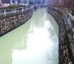 小区景观河一夜变牛奶河