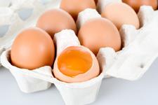 科学家成功将煮熟鸡蛋变生 有望用于癌症治疗