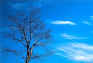 蓝得任性的无锡天空