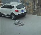 老人路口摔倒遭碾压