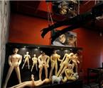 全球八大性博物馆